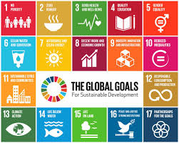 Roundtable of In Focus: SDG 11